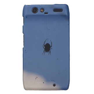 Spider Waiting on a Meal Motorola Droid RAZR Cover