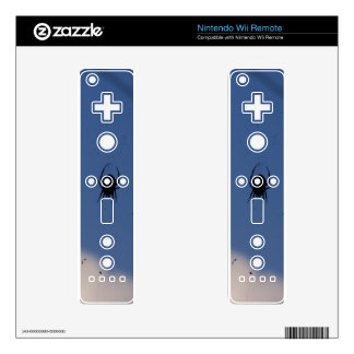 Spider Waiting on a Meal Nintendo Wii Remote Skins