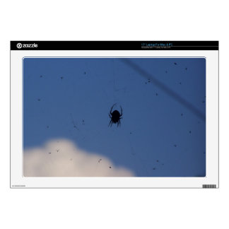 """Spider Waiting on a Meal Skin For 17"""" Laptop"""