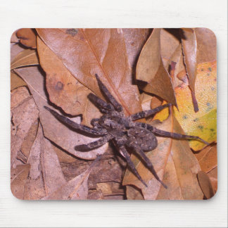 Spider Wandering Over the Leaves CricketDiane Art Mouse Pad