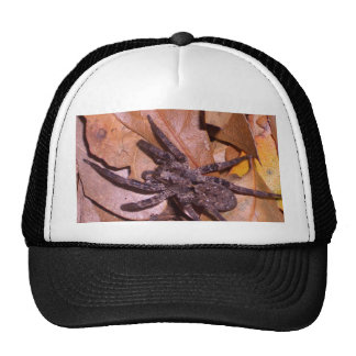 Spider Wandering Over the Leaves CricketDiane Art Trucker Hat
