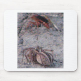 Spider & Wasp Mouse Pad
