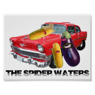Spider Waters Pimp Poster