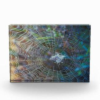 Spider Web Acrylic Award