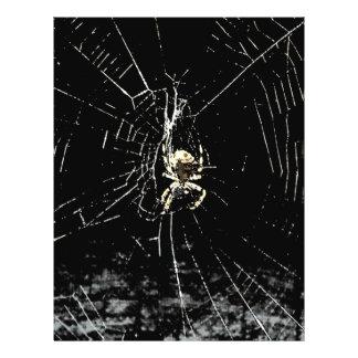 Spider Web at Midnight Flyer