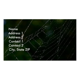 Spider Web Double-Sided Standard Business Cards (Pack Of 100)