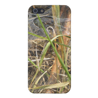 Spider Web In The Grass Case Cases For iPhone 5