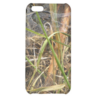 Spider Web In The Grass Case iPhone 5C Cases