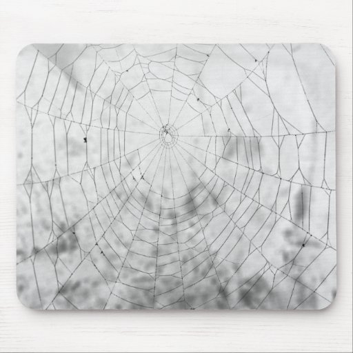 Spider web mouse pad