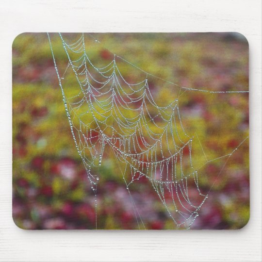 Spider Web of Pearls Mouse Pad