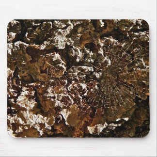 SPIDER WEB ON A SEQUOIA TREE BARK MOUSE PAD
