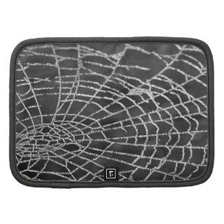 Spider Web rickshaw_folio