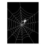 Spider Web Post Card