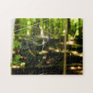 Spider Web Puzzle