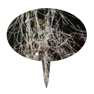 Spider webs with dew drops cake topper