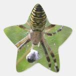 Spider with prey stickers
