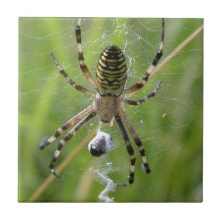 Spider with prey ceramic tile