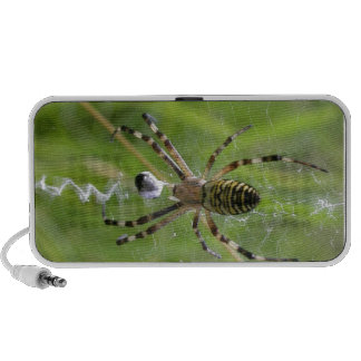 Spider with prey Travel Speakers