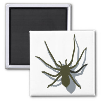 Spider with shadow magnet