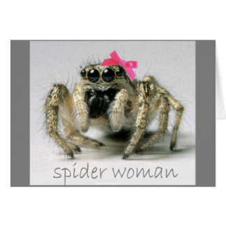 Spider Woman with pink bow Greeting Cards