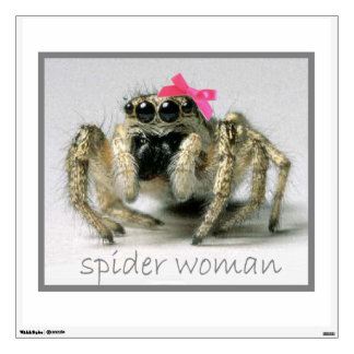 Spider Woman with pink bow Wall Decal