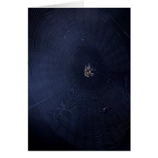 Spider World Wide Web Card