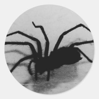 spideroo pegatina redonda