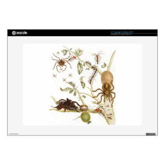 """Spiders, ants and hummingbird on a branch of ... 15"""" laptop decal"""