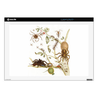 Spiders, ants and hummingbird on a branch of ... skin for laptop