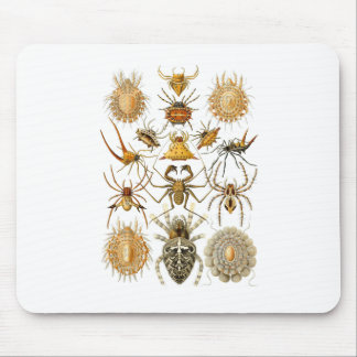 Spiders Mouse Pad