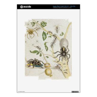 Spiders: Mygole, plate 18 from 'Over de Voorteelin Skins For iPad 3