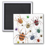 Spiders 'N Patterns 2 Inch Square Magnet