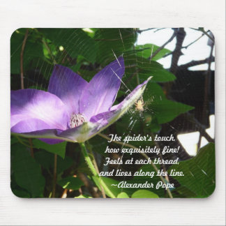 Spider's Touch-Nature Mouse Pad