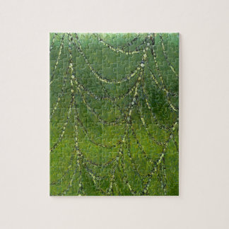 Spiders Web Jigsaw Puzzle