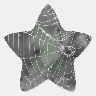 SPIDERS WEB STAR STICKER
