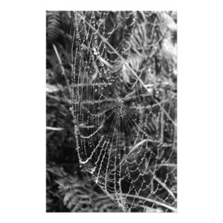 Spiders Web Stationery