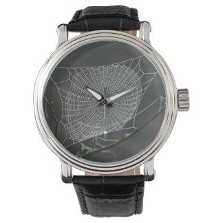 Spider's web watch