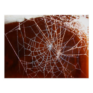 spiderweb at nighttime poster
