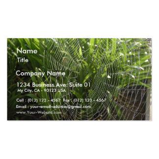 Spiderweb cubrió con rocío por la mañana tarjetas de visita