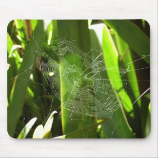 Spiderweb en hojas tropicales alfombrilla de ratón