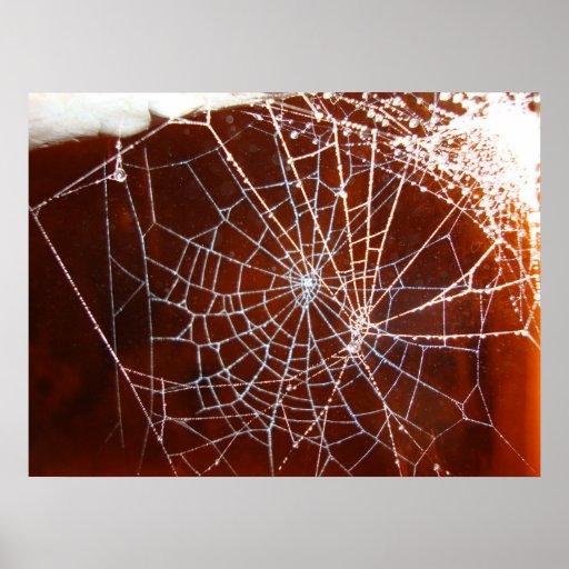 spiderweb en la noche poster