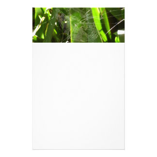 Spiderweb in Tropical Leaves Green Nature Stationery