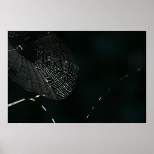 Spiderweb Poster