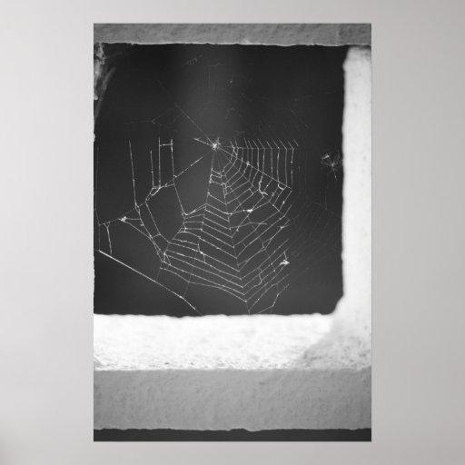 Spiderweb Impresiones