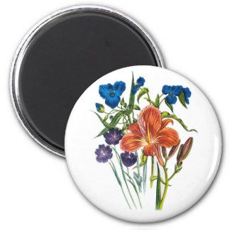 Spiderwort and Daylily Magnet