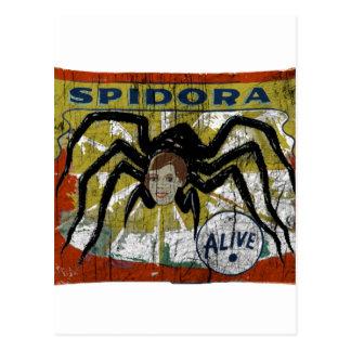 Spidora Postcard