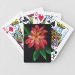 Spielkarten, Cards Playing Cards