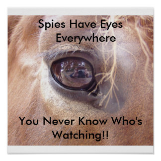 Spies Eyes Poster