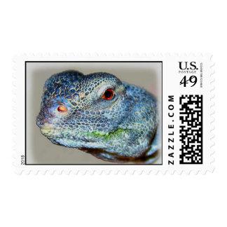 Spike Postage Stamp