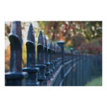 Spiked Iron Fence Print